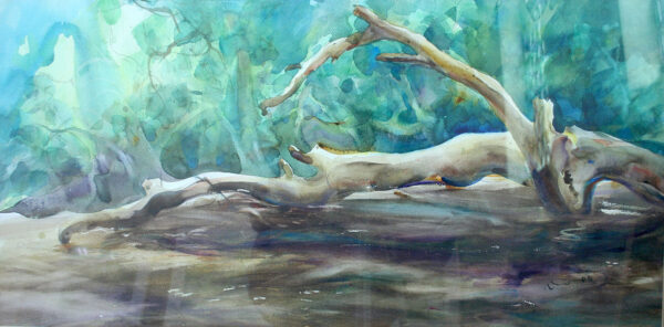 Memory on Tahan River